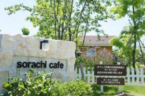 【ソラチカフェ】大垣のオシャレカフェ!!モーニングもランチも綺麗なガーデンを眺めて食べよう